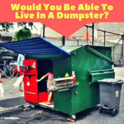 Dumpster Living In Today's World