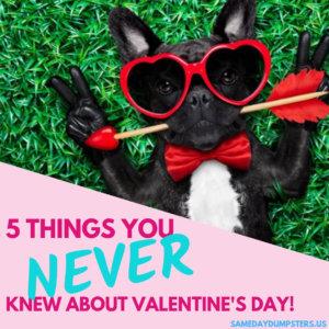 Valentine's Day Fun Facts
