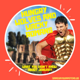 Things You Never Knew About The Romans!