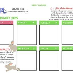 3rd Week of February