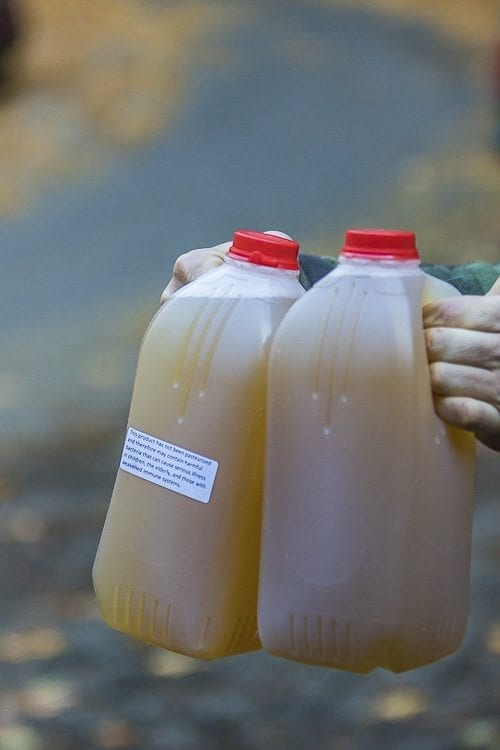 Multiple Jugs of Urine
