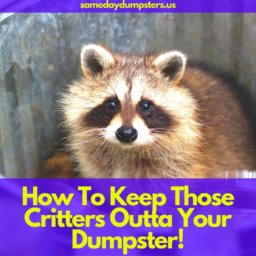 How To Keep Dumpsters Pest Free