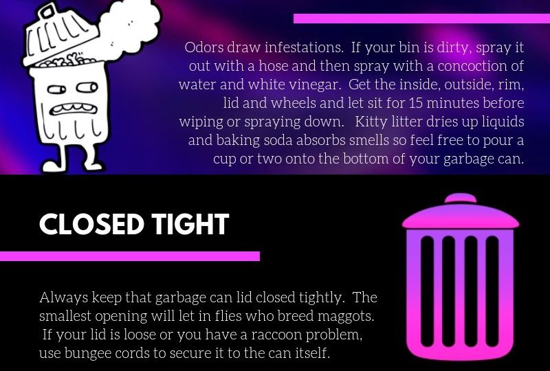 How To Keep That Trash Stink And Pest Free
