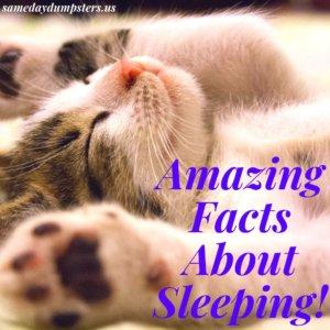 Sleeping Facts
