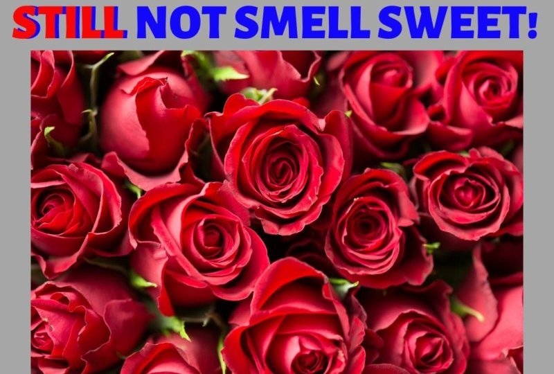 A Dumpster By Any Other Name Would STILL Not Smell Sweet!