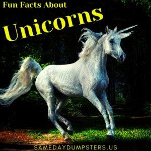 Fun Facts About Unicorns
