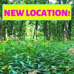 New Location - Palos Hills